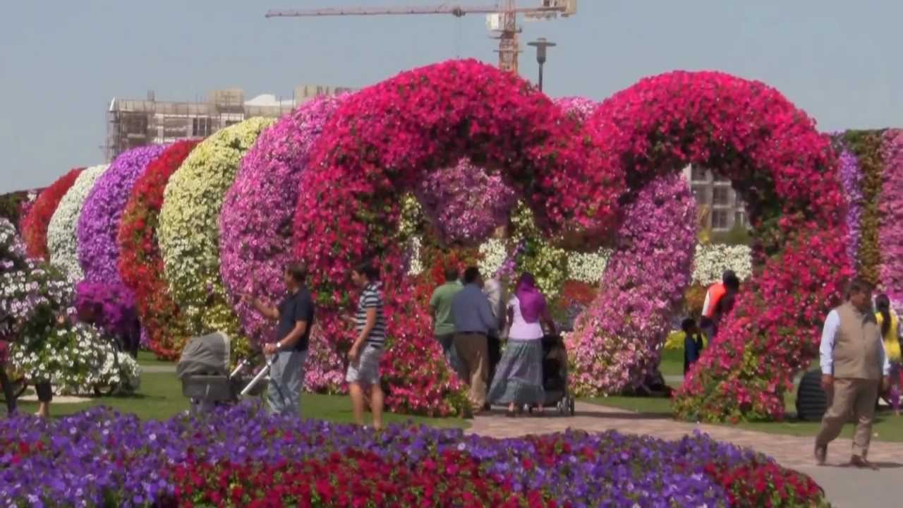 Miracle Garden Video – Dubai