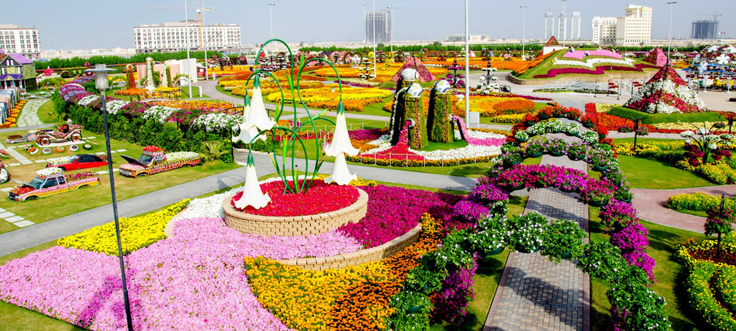 Miracle Garden Pictures – Dubai
