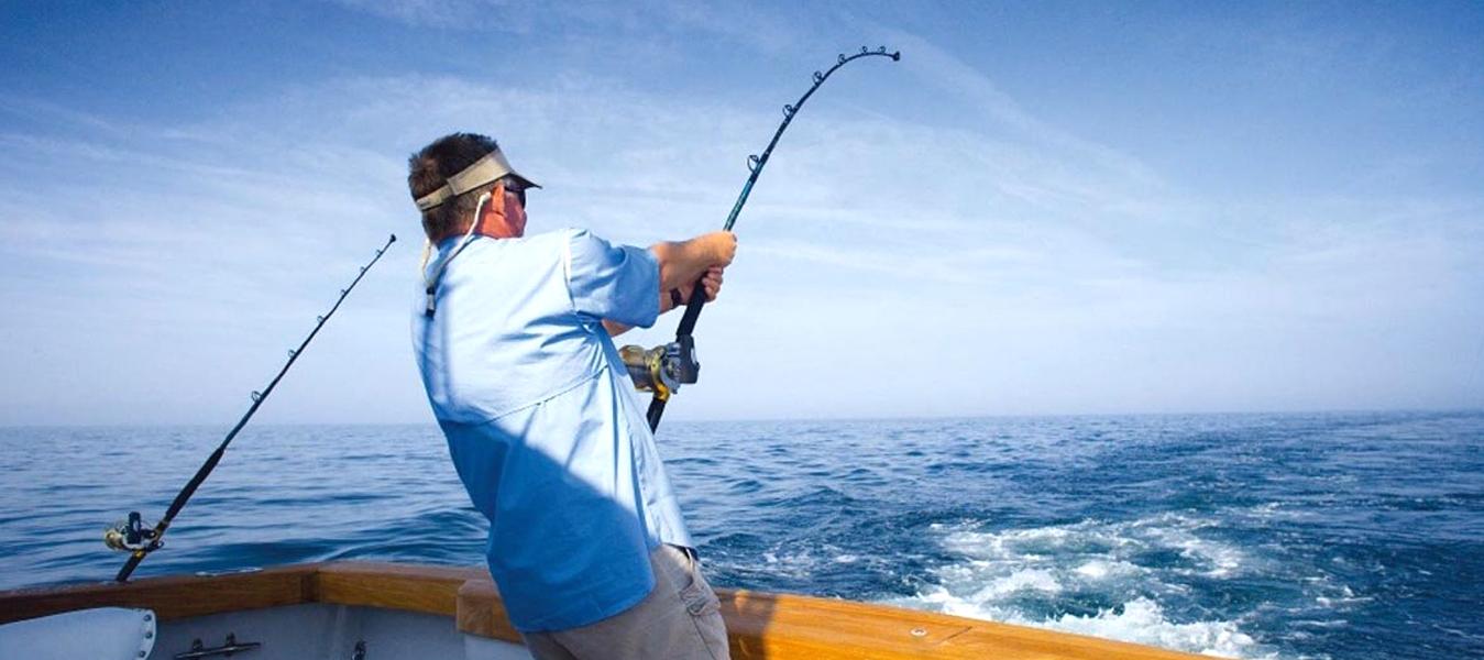 Go fishing dubai fishing in dubai fishing trips tours for Fishing in dubai